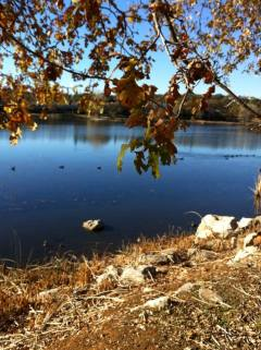 Cameron Park Lake Nov2013